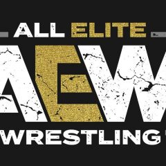 Did All Elite Wrestling get it right with Double or Nothing?