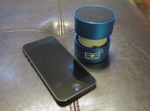 bassboomz product 1