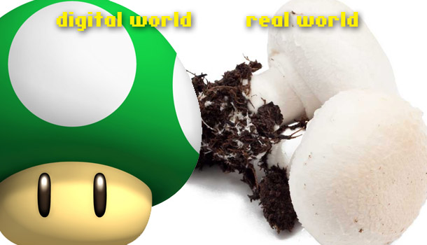 Grow a real world 1UP mushroom