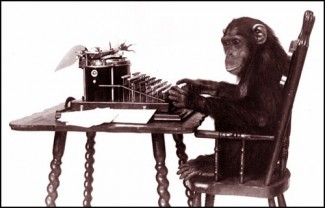 monkey-typewriter-1