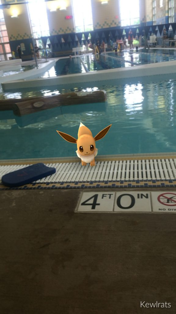 An Eevee caught while my daughter was waiting for her swim class to start